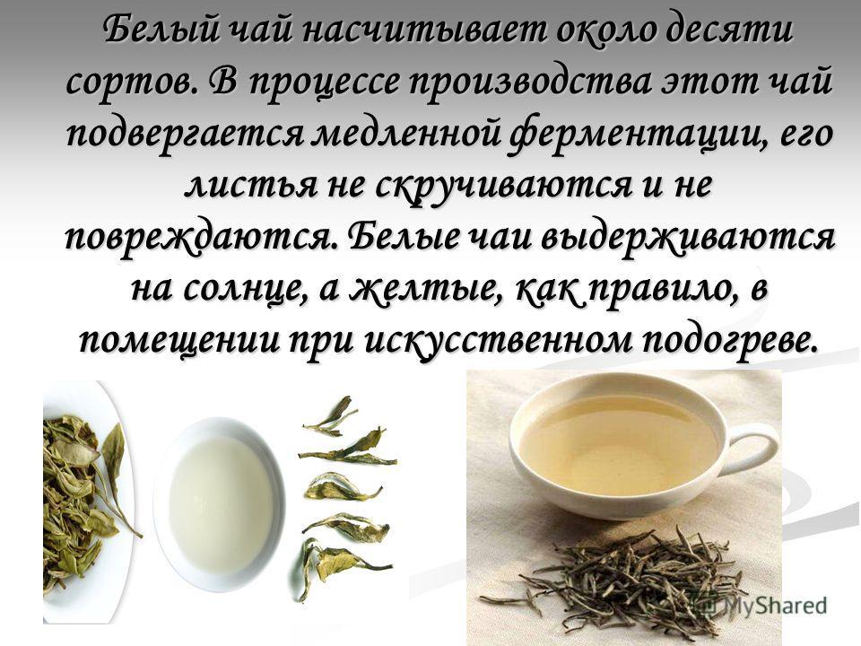 Белый чай насчитывает около десяти сортов. В процессе производства этот чай подвергается медленной ферментации, его листья не скручиваются и не повреждаются. Белые чаи выдерживаются на солнце, а желтые, как правило, в помещении при искусственном подо