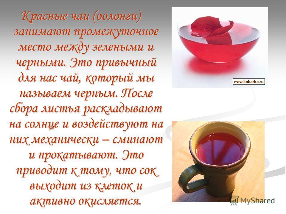 Красные чаи (оолонги) занимают промежуточное место между зелеными и черными. Это привычный для нас чай, который мы называем черным. После сбора листья раскладывают на солнце и воздействуют на них механически – сминают и прокатывают. Это приводит к то