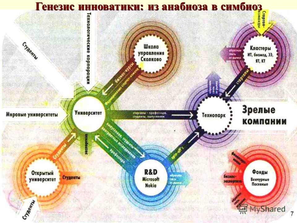 7 Генезис инноватики: из анабиоза в симбиоз