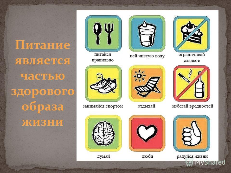 Питание является частью здорового образа жизни