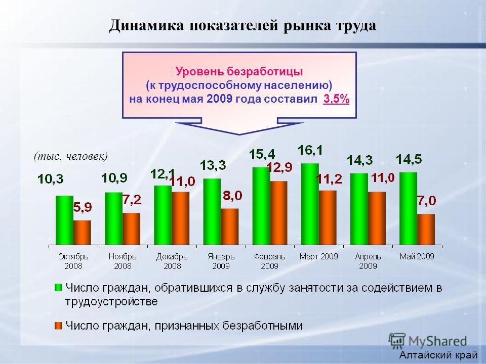 Динамика показателей рынка труда Уровень безработицы (к трудоспособному населению) на конец мая 2009 года составил 3,5% (тыс. человек) Алтайский край