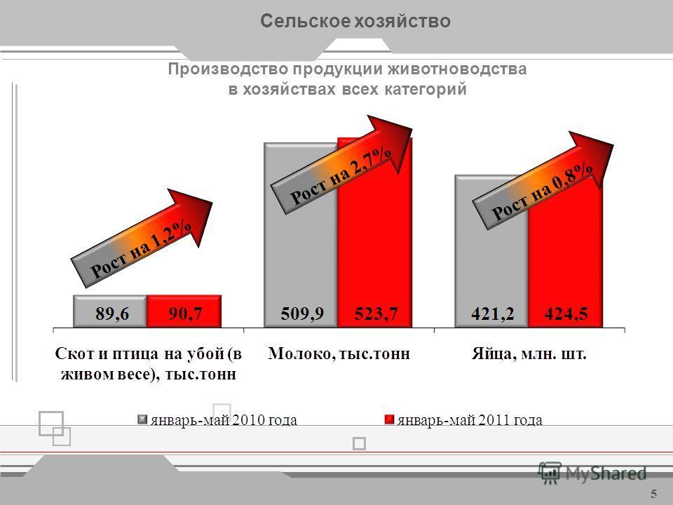 Валовая продукция сельского хозяйства, млрд. рублей Сельское хозяйство * - в сопоставимых ценах 4 Рост на 1,6% *