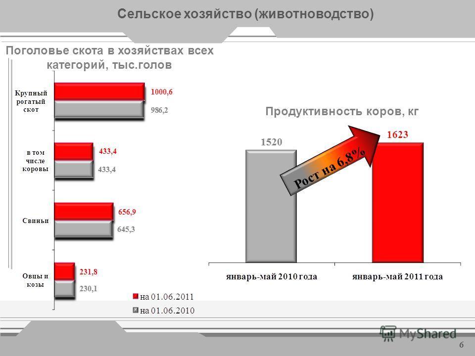Сельское хозяйство 5 Производство продукции животноводства в хозяйствах всех категорий Рост на 1,2% Рост на 2,7% Рост на 0,8%