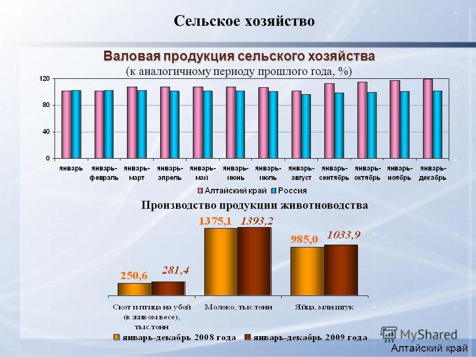 Сельское хозяйство Алтайский край Производство продукции животноводства Валовая продукция сельского хозяйства (к аналогичному периоду прошлого года, %)