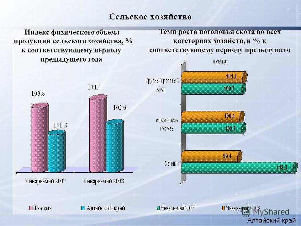 Сельское хозяйство Алтайский край Индекс физического объема продукции сельского хозяйства, % к соответствующему периоду предыдущего года Темп роста поголовья скота во всех категориях хозяйств, в % к соответствующему периоду предыдущего года