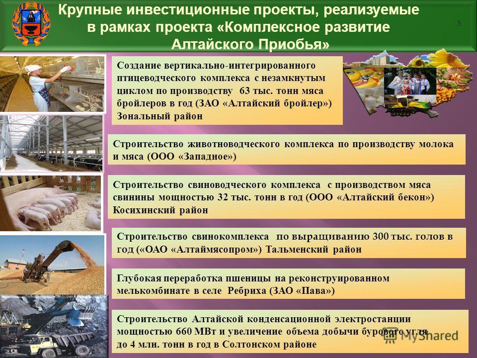 Крупные инвестиционные проекты, реализуемые в рамках проекта «Комплексное развитие Алтайского Приобья» Строительство животноводческого комплекса по производству молока и мяса (ООО «Западное») Строительство свиноводческого комплекса с производством мя