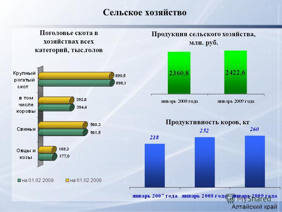 Сельское хозяйство Алтайский край Продуктивность коров, кг Поголовье скота в хозяйствах всех категорий, тыс.голов Продукция сельского хозяйства, млн. руб.