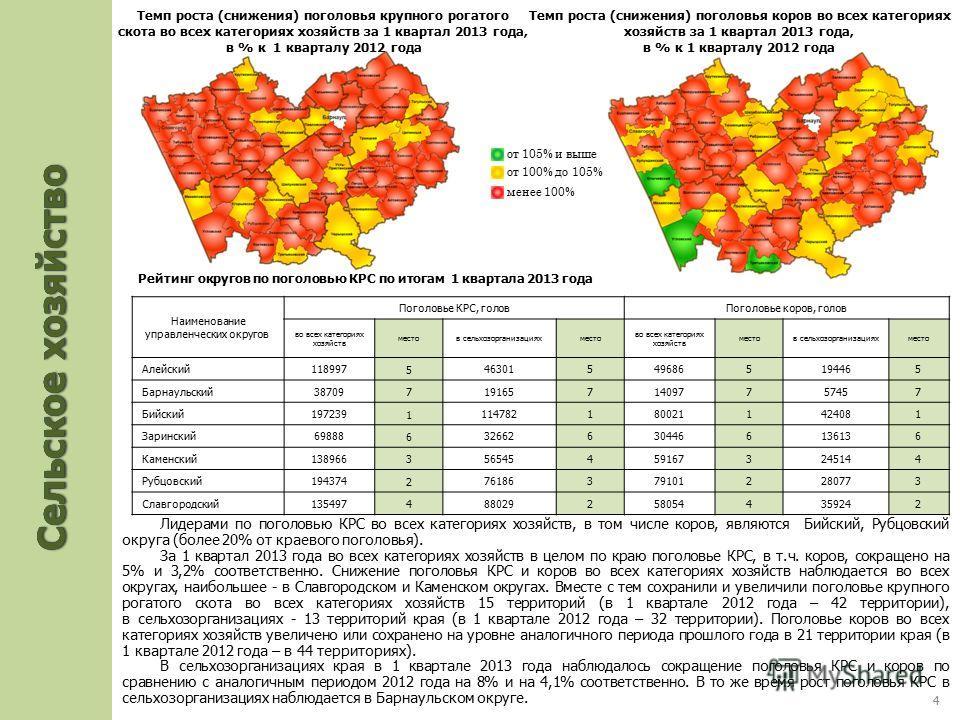 Лидерами по поголовью КРС во всех категориях хозяйств, в том числе коров, являются Бийский, Рубцовский округа (более 20% от краевого поголовья). За 1 квартал 2013 года во всех категориях хозяйств в целом по краю поголовье КРС, в т.ч. коров, сокращено