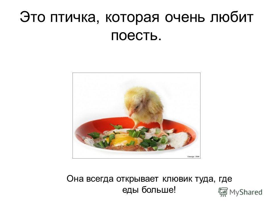 Это птичка, которая очень любит поесть. Она всегда открывает клювик туда, где еды больше!