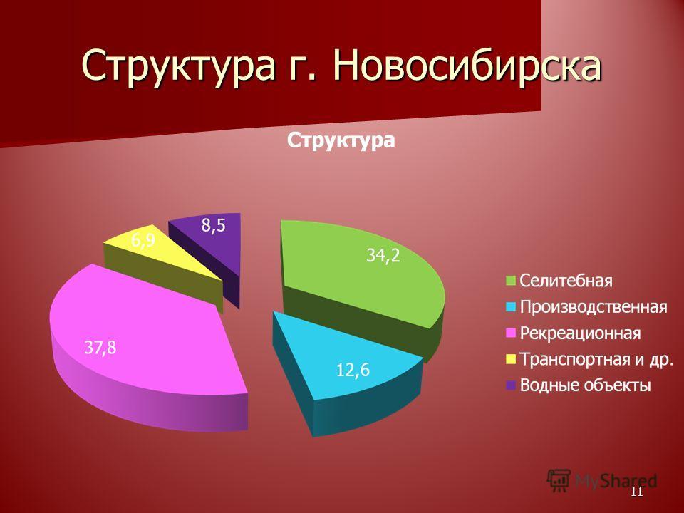 Структура г. Новосибирска 11