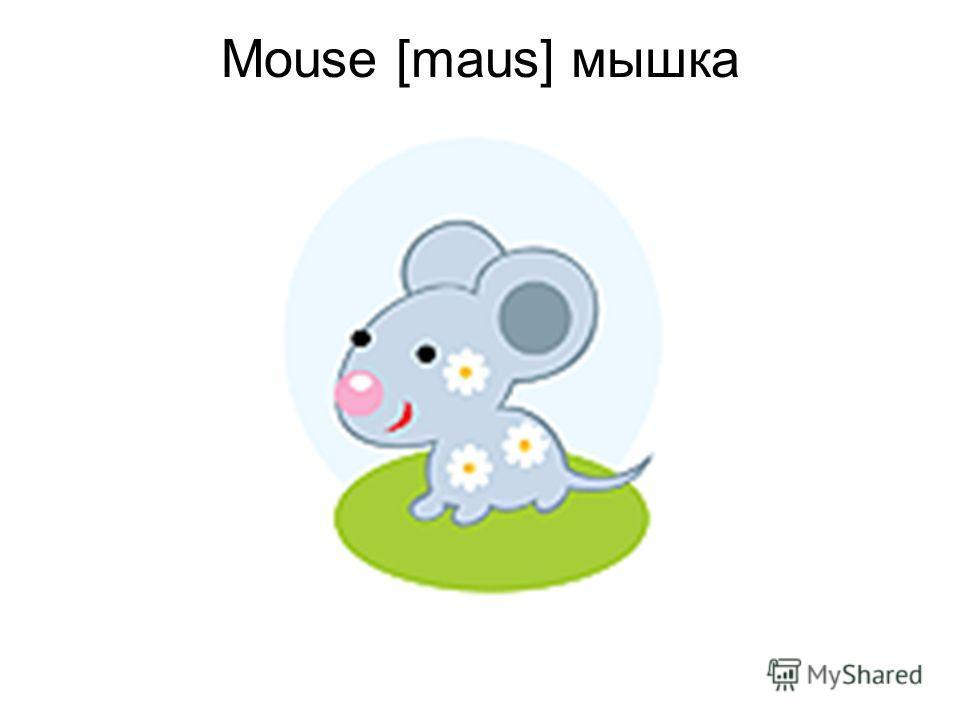 Mouse [maus] мышка