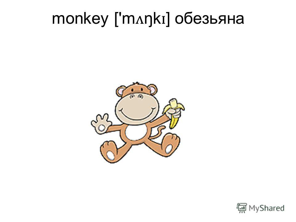 monkey ['m ʌ ŋk ɪ ] обезьяна