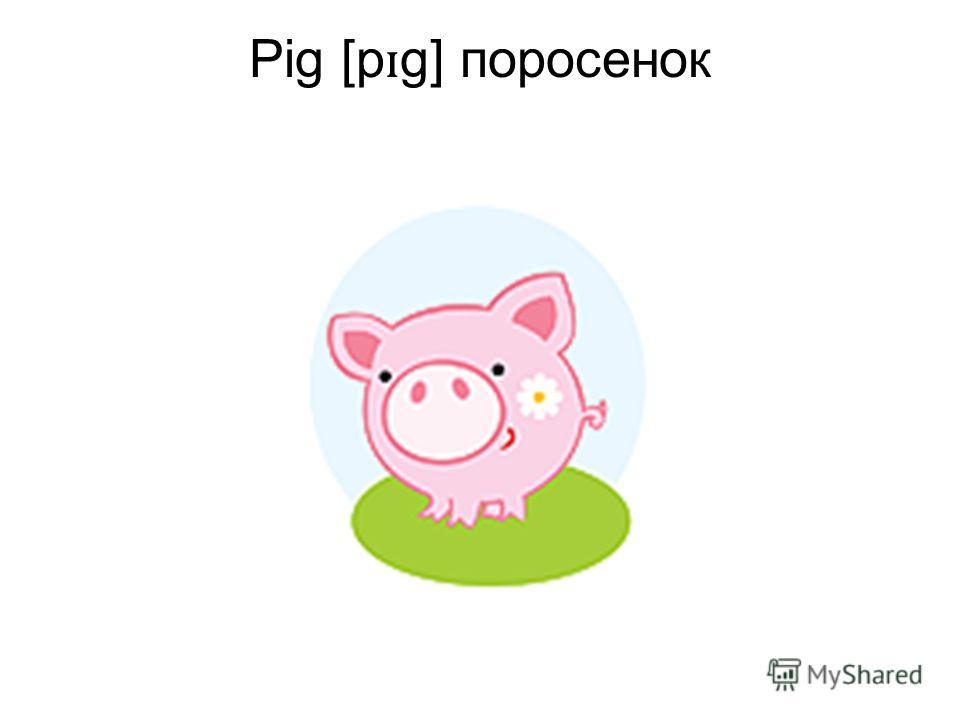 Pig [p ɪ g] поросенок