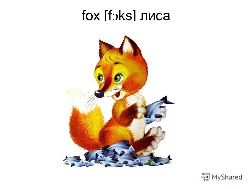 fox [f ɔ ks] лиса