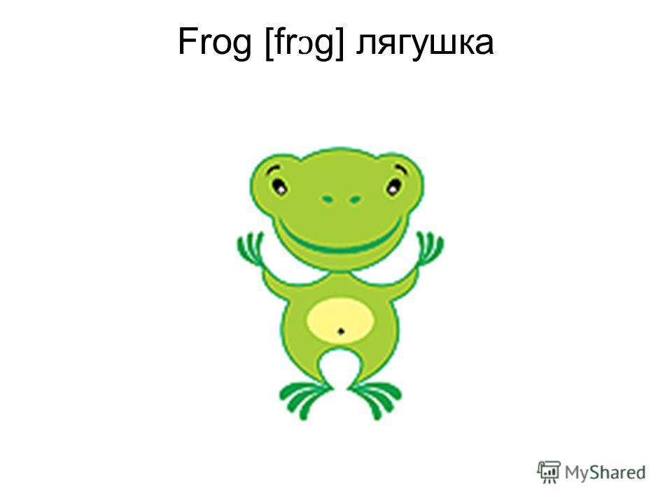 Frog [fr ɔ g] лягушка