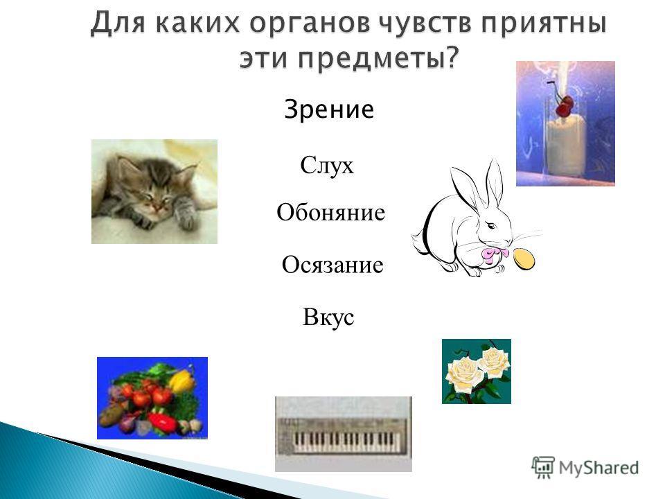 Электрическая Электронная Механическая