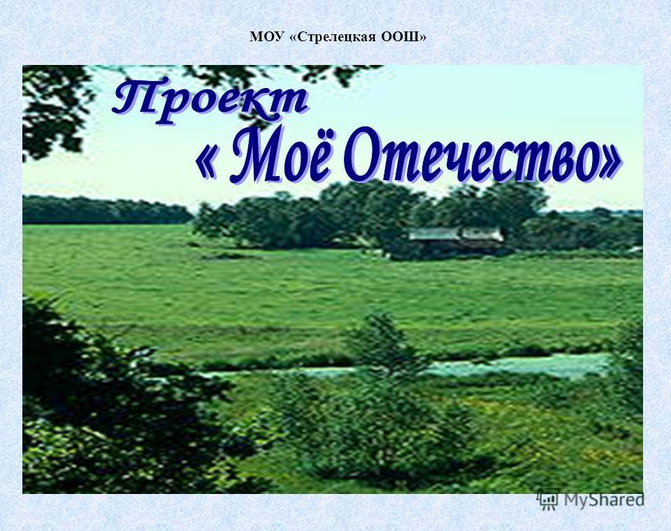 МОУ «Стрелецкая ООШ»
