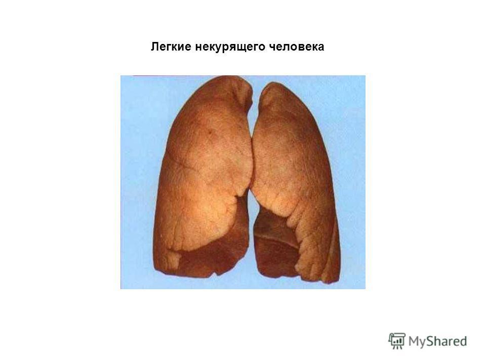 Некурящего человека легкие курящего