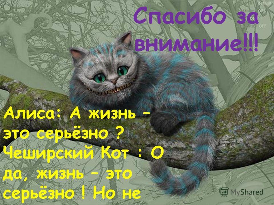 Алиса: А жизнь – это серьёзно ? Чеширский Кот : О да, жизнь – это серьёзно ! Но не очень… Спасибо за внимание!!!