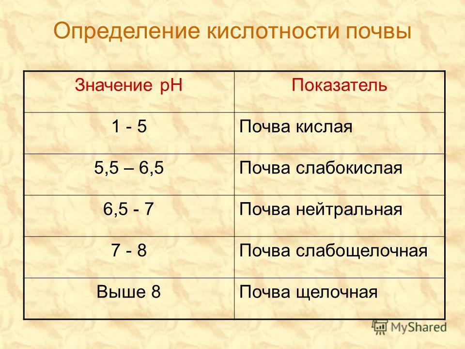 Определение кислотности почвы Значение рНПоказатель 1 - 5Почва кислая 5,5 – 6,5Почва слабокислая 6,5 - 7Почва нейтральная 7 - 8Почва слабощелочная Выше 8Почва щелочная