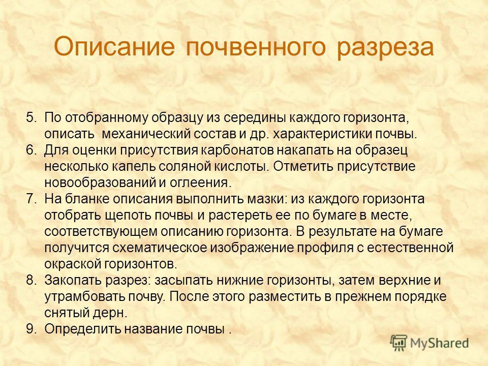 Описание почвенного разреза 5.
