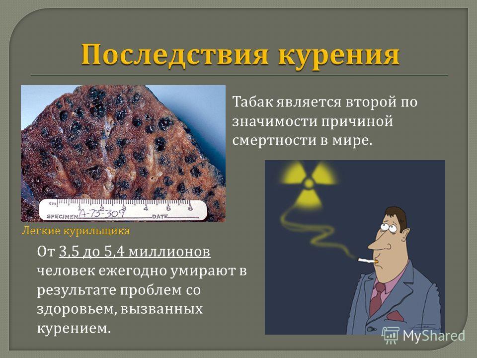 Легкие курильщика От 3,5 до 5,4 миллионов человек ежегодно умирают в результате проблем со здоровьем, вызванных курением. Табак является второй по значимости причиной смертности в мире.
