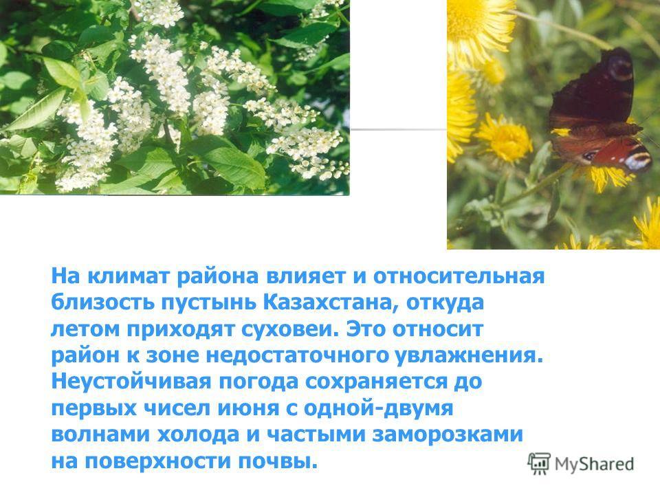 На климат района влияет и относительная близость пустынь Казахстана, откуда летом приходят суховеи. Это относит район к зоне недостаточного увлажнения. Неустойчивая погода сохраняется до первых чисел июня с одной-двумя волнами холода и частыми заморо