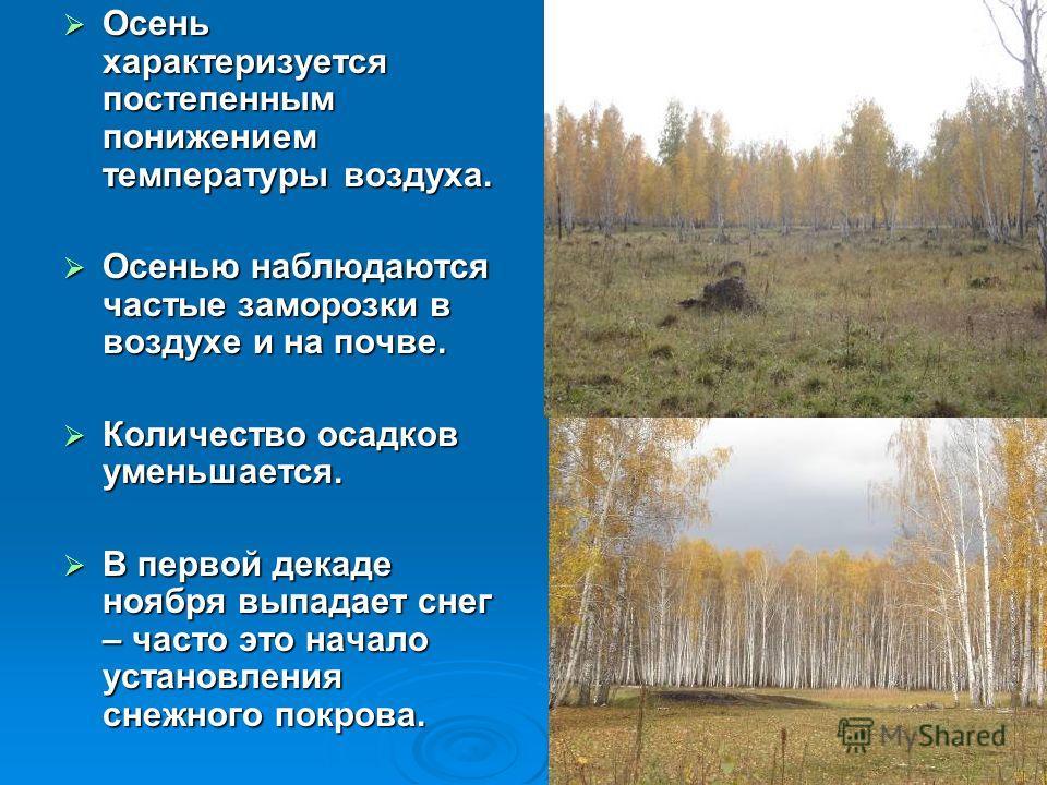 Осень характеризуется постепенным понижением температуры воздуха. Осень характеризуется постепенным понижением температуры воздуха. Осенью наблюдаются частые заморозки в воздухе и на почве. Осенью наблюдаются частые заморозки в воздухе и на почве. Ко
