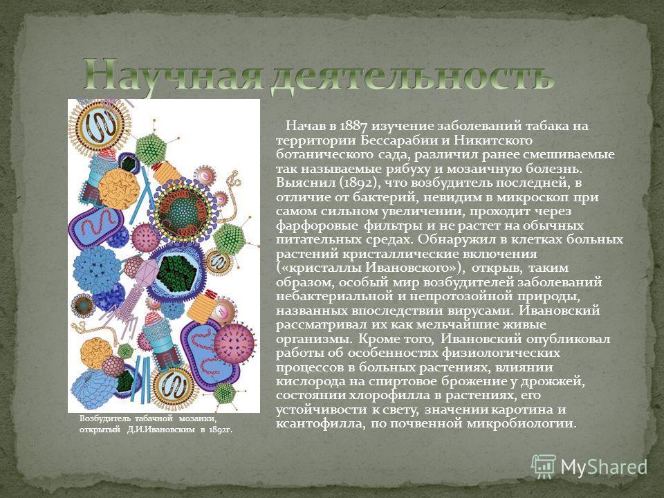Начав в 1887 изучение заболеваний табака на территории Бессарабии и Никитского ботанического сада, различил ранее смешиваемые так называемые рябуху и мозаичную болезнь. Выяснил (1892), что возбудитель последней, в отличие от бактерий, невидим в микро