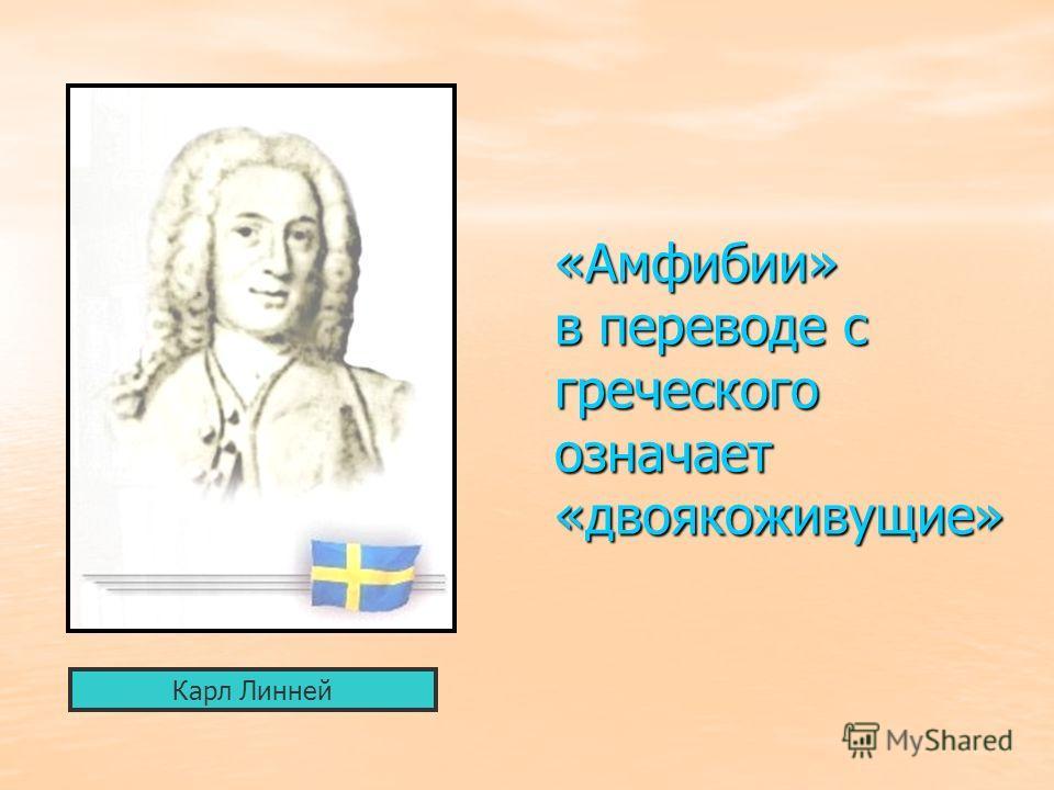 «Амфибии» в переводе с греческого означает «двоякоживущие» Карл Линней