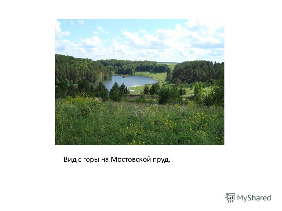 Вид с горы на Мостовской пруд.