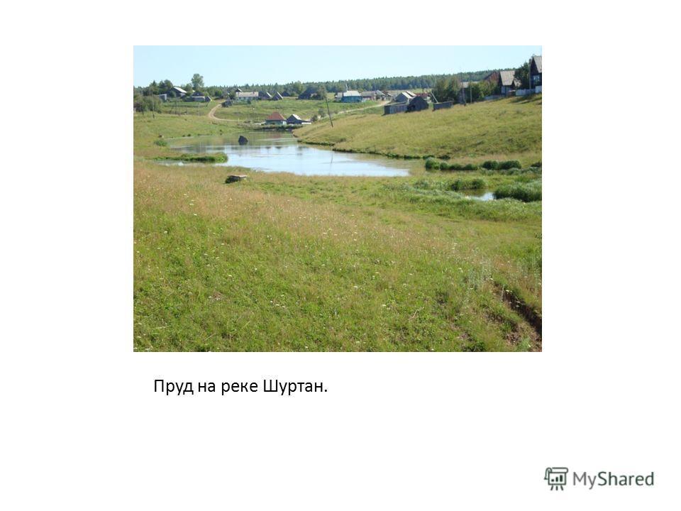 Пруд на реке Шуртан.