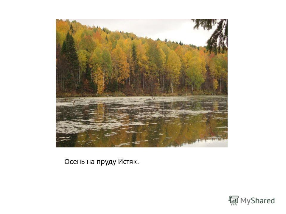 Осень на пруду Истяк.