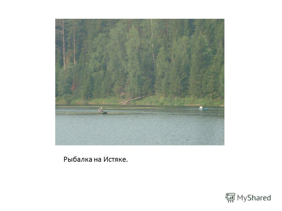 Рыбалка на Истяке.
