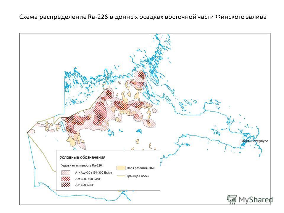 Схема распределение Ra-226 в донных осадках восточной части Финского залива