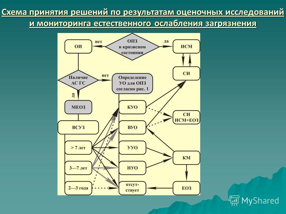 Схема принятия решений по результатам оценочных исследований и мониторинга естественного ослабления загрязнения