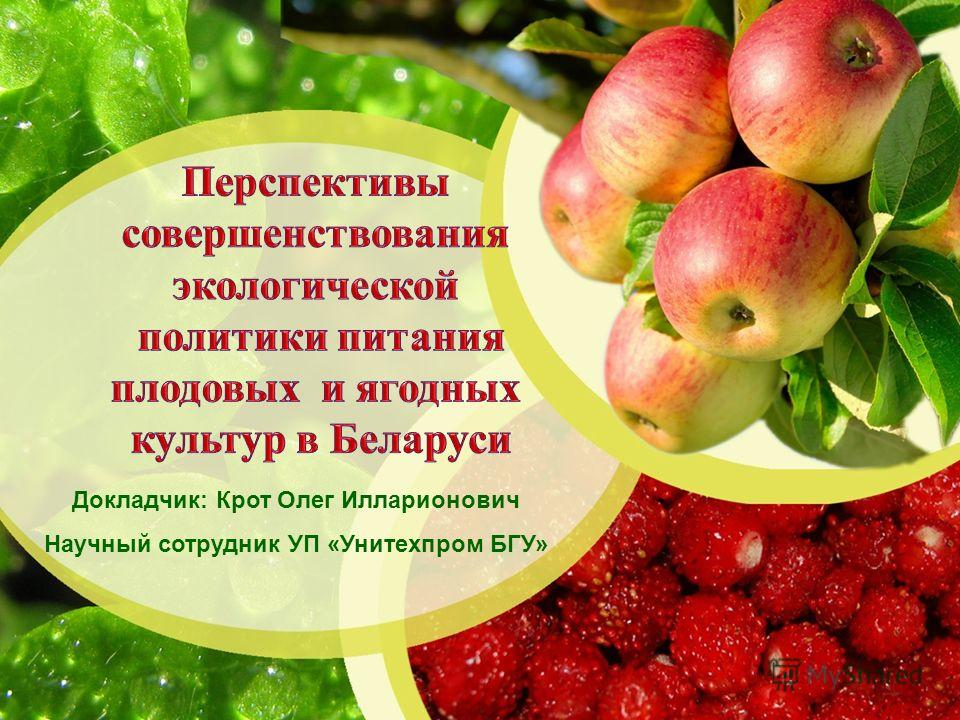 Докладчик: Крот Олег Илларионович Научный сотрудник УП «Унитехпром БГУ»