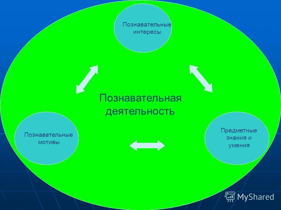 Познавательная деятельность Познавательные мотивы Познавательные интересы Предметные знания и умения