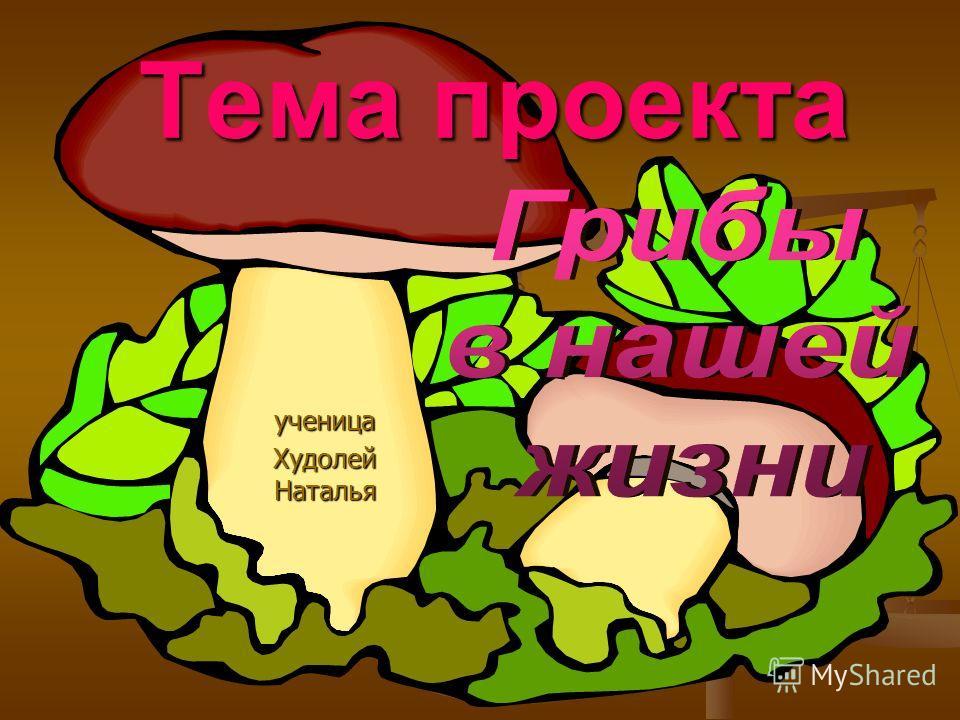 Тема проекта ученица Худолей Наталья