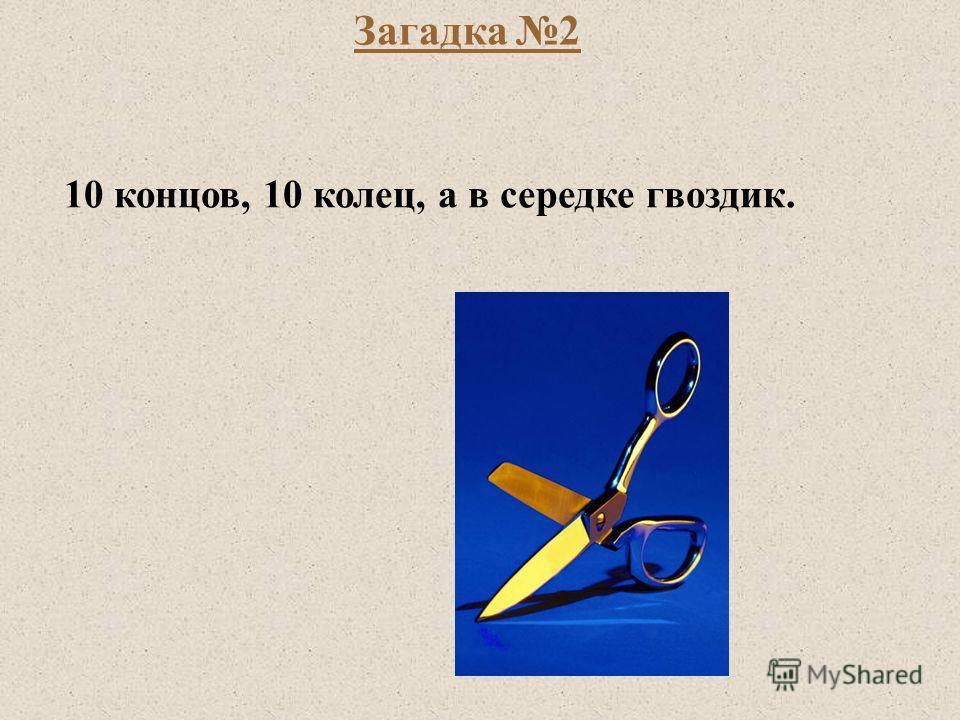 Загадка 2 10 концов, 10 колец, а в середке гвоздик.