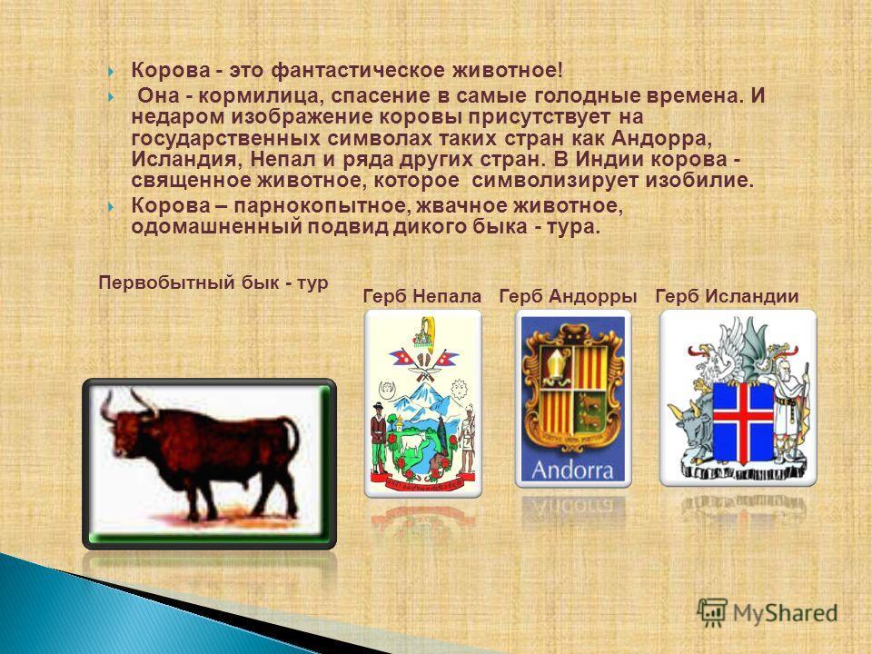 Герб Непала Герб Андорры Герб Исландии Корова - это фантастическое животное! Она - кормилица, спасение в самые голодные времена. И недаром изображение коровы присутствует на государственных символах таких стран как Андорра, Исландия, Непал и ряда дру