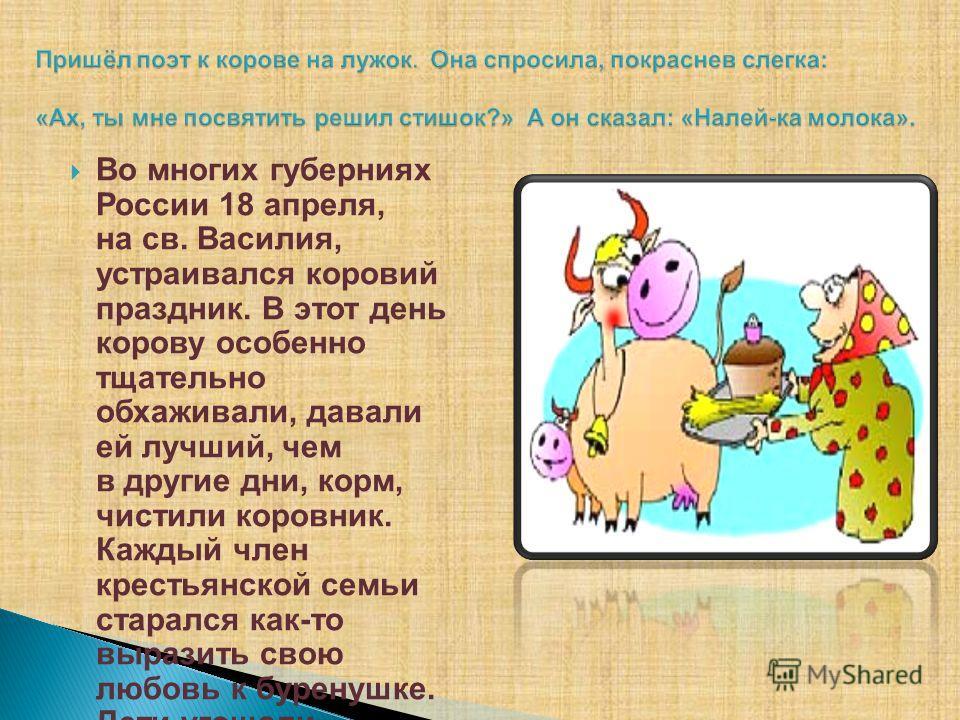 Во многих губерниях России 18 апреля, на св. Василия, устраивался коровий праздник. В этот день корову особенно тщательно обхаживали, давали ей лучший, чем в другие дни, корм, чистили коровник. Каждый член крестьянской семьи старался как-то выразить