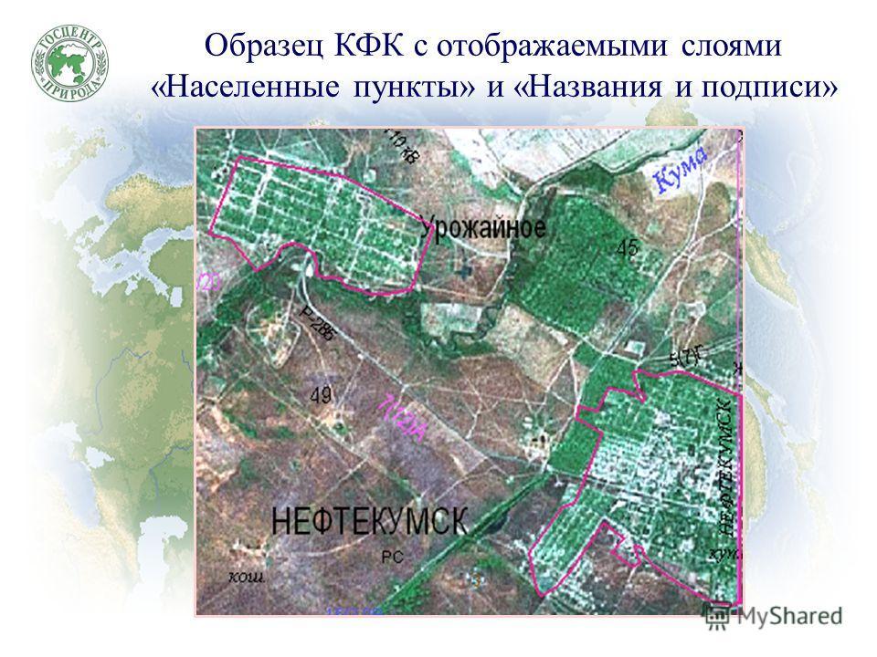 Образец КФК с отображаемыми слоями «Населенные пункты» и «Названия и подписи»