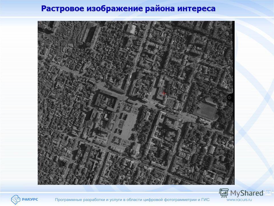 Растровое изображение района интереса