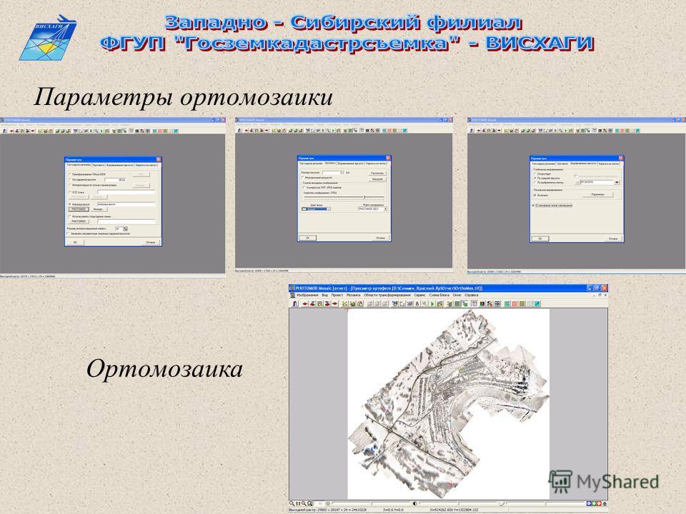 Параметры ортомозаики Ортомозаика