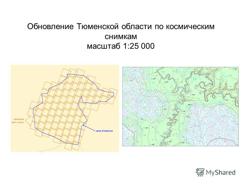 Обновление Тюменской области по космическим снимкам масштаб 1:25 000