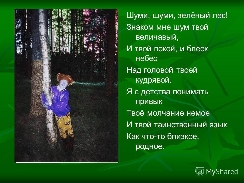 Шуми, шуми, зелёный лес! Знаком мне шум твой величавый, И твой покой, и блеск небес Над головой твоей кудрявой. Я с детства понимать привык Твоё молчание немое И твой таинственный язык Как что-то близкое, родное.