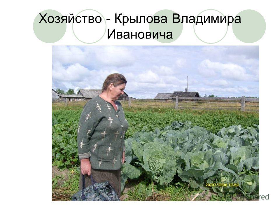 Хозяйство - Крылова Владимира Ивановича