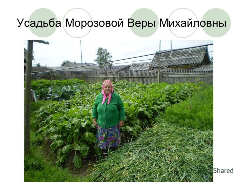 Усадьба Морозовой Веры Михайловны