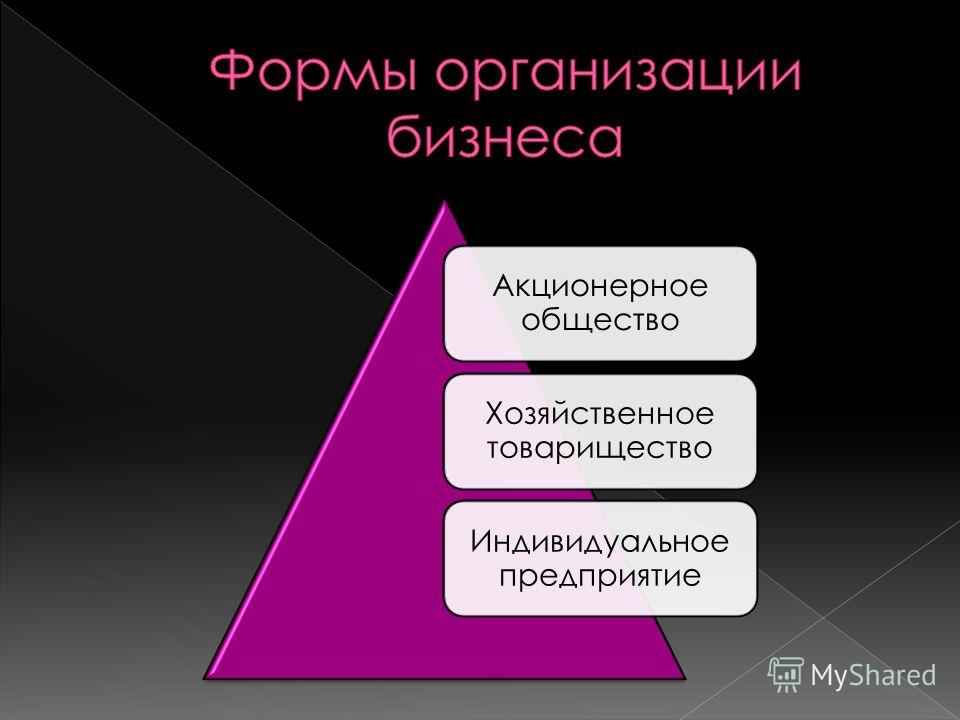 Акционерное общество Хозяйственное товарищество Индивидуальное предприятие